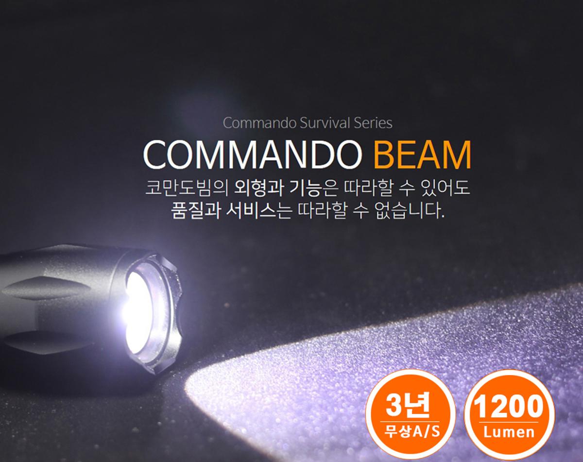 beam_1.jpg